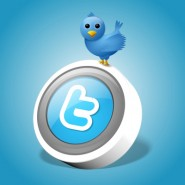 How to Optimize Your Company's Twitter Account in 5 Easy Steps